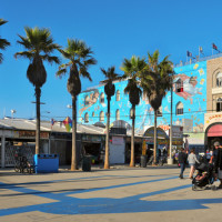 Venice Boardwalk Vehicular Assault